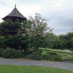 Tree house in garden