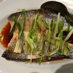 Sea Bass with soy sauce and spring onion