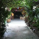 secrect entrance Don Papa