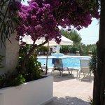 vista della piscina dal patio dell'app.