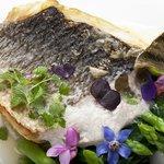 Filetto di branzino pescato, aria di pompelmo rosa, crema di carciofi, spinaci e asparagi