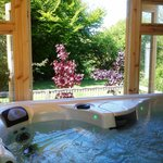 Granary 7 Seater Jacuzzi Spa