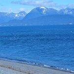 Kachemak Bay, Homr, AK
