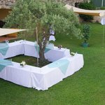 Cocktail autour de l'olivier