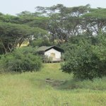 Home at Porini Mara Camp