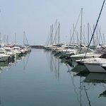 Face au port de Golfe Juan