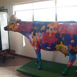 A colurful cow at Gallo's Dairy
