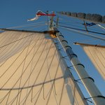 Beautiful sails filling with the breeze