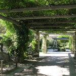 Walkway to English Garden