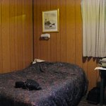 single room/lowest rate--more than adequate