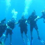 Diving in Cozumel with Blue Magic