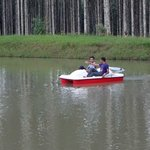 Pedal Boating  at Pappys Nest Resort