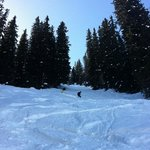 Off-piste Davos