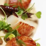 Seared scallops served with air dried salami, cauliflower puree and pistachio