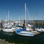 Campbell River (3)