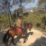 Petit Blau Apartments, horse riding in Paguera at La Rancho Romana
