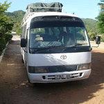 kiboko bus