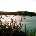 Lulworth Cove morning sunshine on the boats