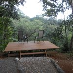 A lookout point over the rainforest