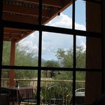 View of patio and arroyo from dining room