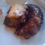 half portion of grilled octopus