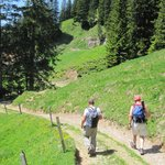 Hiking down Mt Rigi