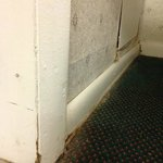 Mold/mildew and overall nastiness of the room.