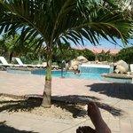 Zwembad Camacuri