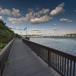 Boardwalk at Peacock Park