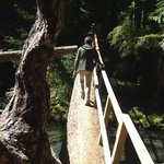 Gorge  trail hike