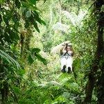 Tucanopy ziplining