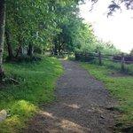 Blake Island trail