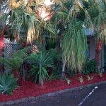 Garden near rooms & pool