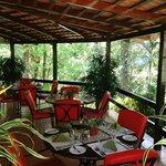 Bar El Bosque