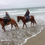 Horses - Sonny & Scarlet
