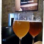 Bee Sting & Organic Ale
