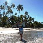 Praia dos Carneiros 1.