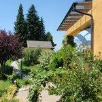 Zugang zum Gartenappartement