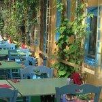 Taverna  Hellas summer