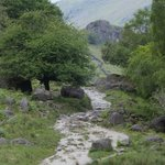 Part of the path up to Easedale Tarn
