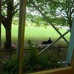 Вид из окна во время завтрака