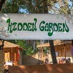 Hidden Garden - Camp