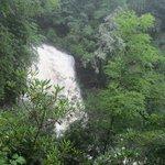 Waterfalls near by