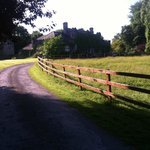 The curving drive to the secluded Newpark House