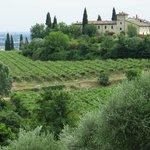Valpolicella Amarone Tour