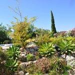 Muestra de la cuidada jardinería de las zonas comunes