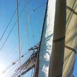Friends Good Will sails