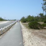 The main route throughthe site to the beach