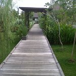 Pathway to our Villa