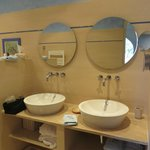 Bathroom for the Mare